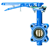 Butterfly Balancing Valves